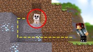 Minecraft: O SHAKE SE ESCONDEU !! ( Esconde-Esconde )