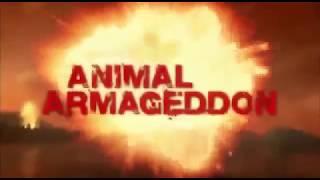 Армагеддон животных   Лучи смерти  1 фильм