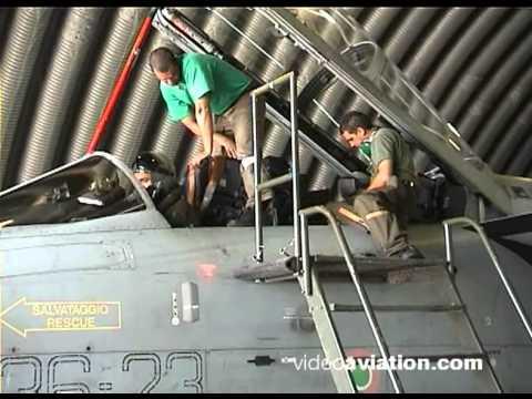 36° Stormo Italian Air Force Tornado IDS & ADV 4/7