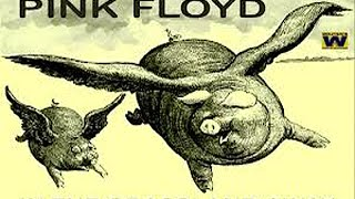 "Pink Floyd - "" In The Grassland Away "" HD Audio"