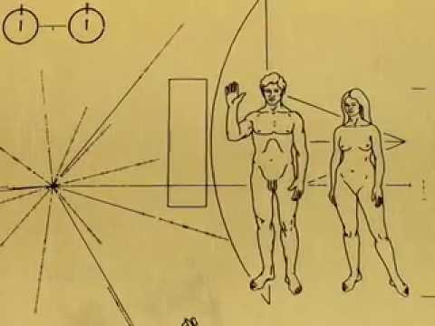 COURT: Cosmic Connexion - Pioneer