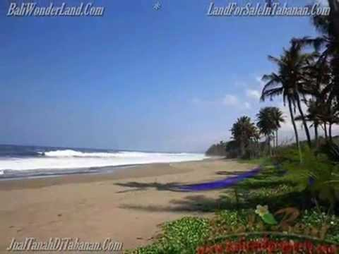 100++ AFFORDABLE PROPERTY & LAND FOR SALE IN BALI for Investment