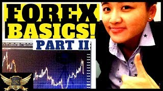 How to Make Money in Forex & How It Works