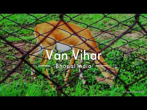 Van Vihar Bhopal