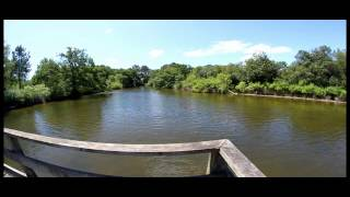 Voyage au Bassin d'Arcachon