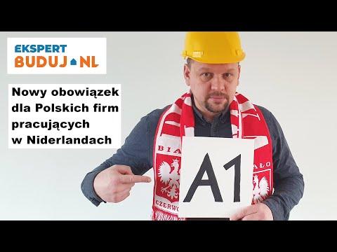 Nowy obowiązek dla Polskich firm pracujących w Niderlandach - Ekspert Buduj.nl #4