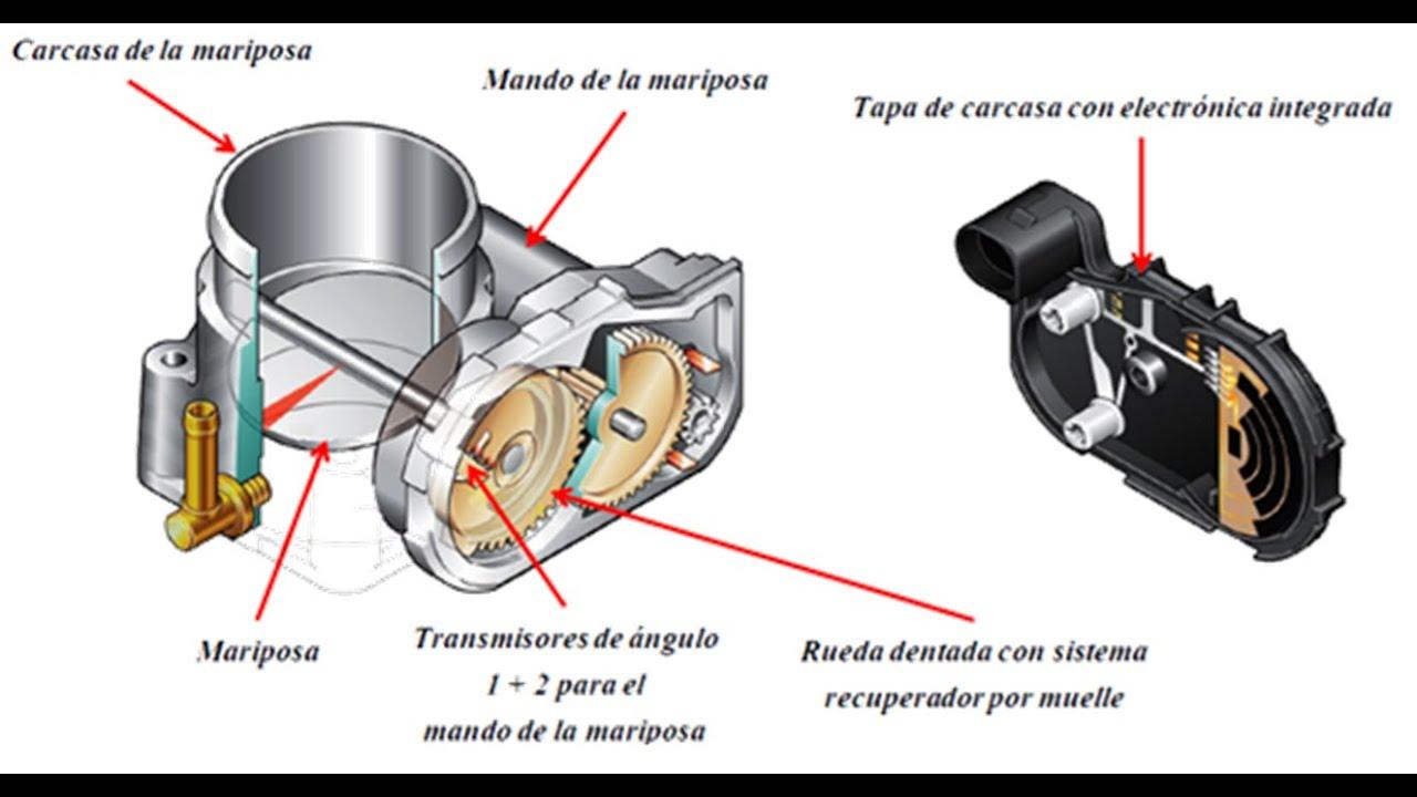 Charla técnica sobre cuerpos de aceleración de la marca Volkswagen | Omar VW
