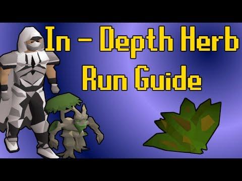 In-Depth Herb Run Guide - OSRS Money Making