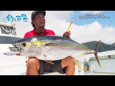 【釣り百景】#301 大型キハダ捕獲!御蔵島トップウォーターゲーム