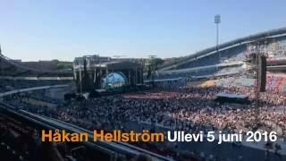 Håkan Hellström Ullevi 5 juni 2016