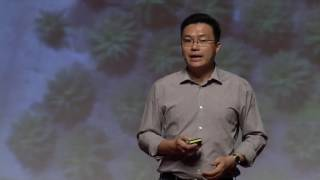Drones in the Sky: Future of Plantation Management | Jiin Joo Ong | TEDxNUS