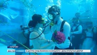 Появилось видео кемеровской подводной свадьбы