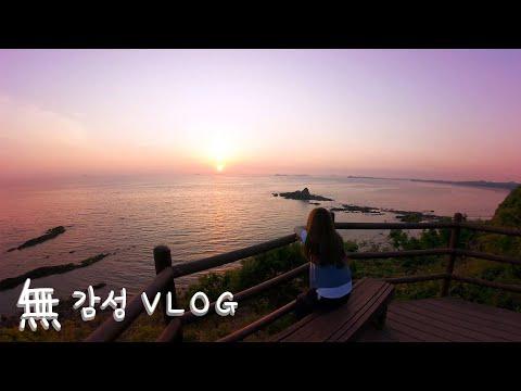 집나간햄지:) 내맘대로 無감성 브이로그Vlog ㅋㅋㅋ ★ 안면도여행!