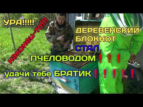 Деревенский Блокнот стал ПЧЕЛОВОДОМ!!!Как Живёт Деревенский Блокнот за кадром?😊👍