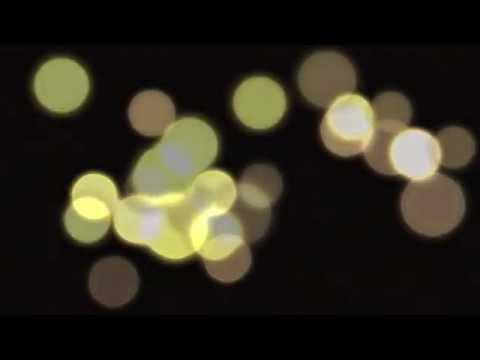 Zelenka - The Capriccios ZWV 182-5 & 190 [Dorian Sono Luminus DSL-92163]
