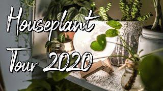 Houseplant Apartment Tour! (2020)