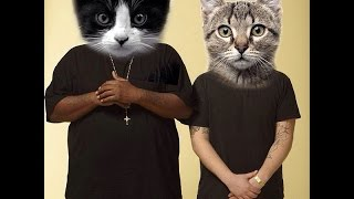Meow The Jewels - Meowrly (Prod. by Boots) (Run The Jewels)