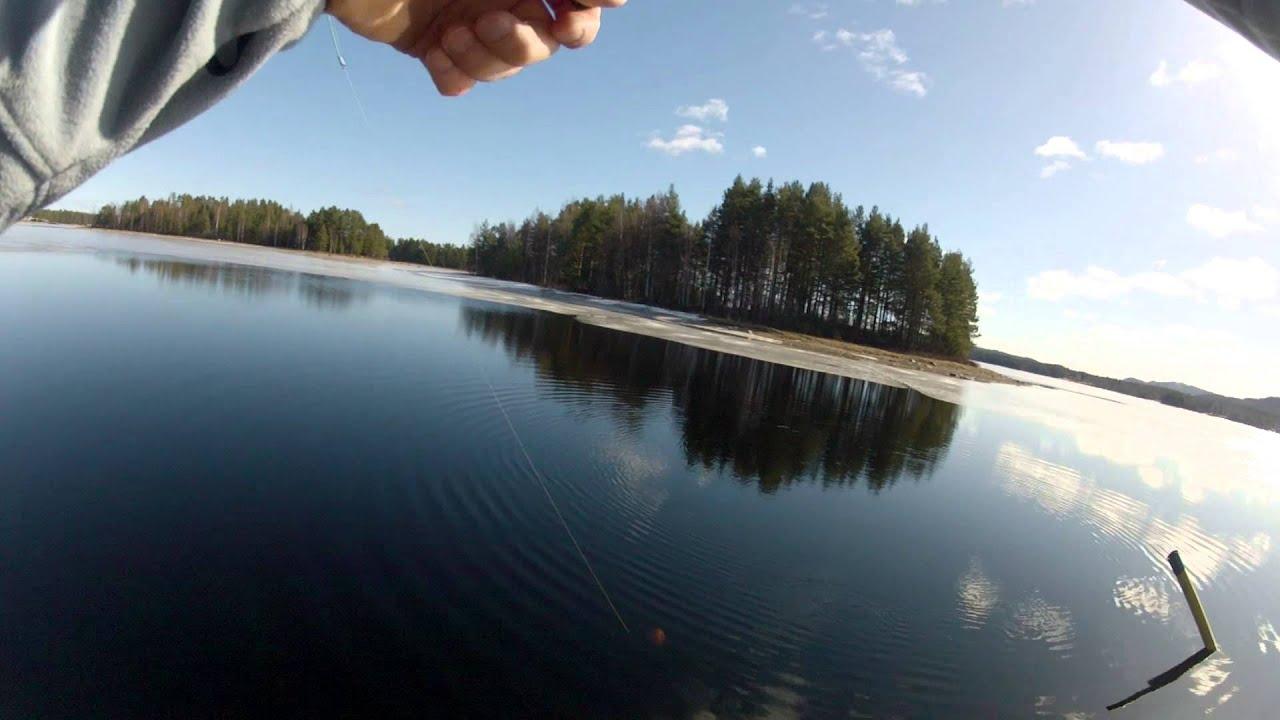 Рыбалка озеро новоивановское