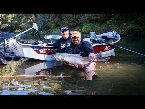 Trask wilson rivers fall chinook youtube for Trask river fishing report