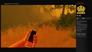 Firewatch last chapter (spoilers)