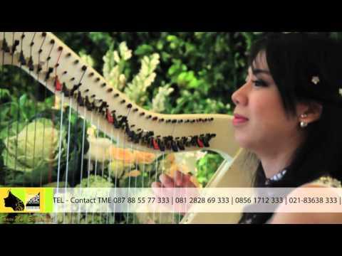 TAMAN MUSIC ENTERTAINMENT - INSTRUMENT HARPA  ( Cover )