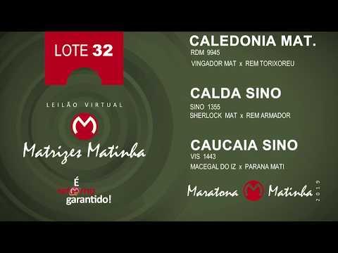 LOTE 32  Matrizes Matinha 2019