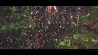Music video of CATSELF ft. Saint Nicholas Orchestra