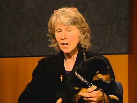 "Back Page 295 Susan Chernak McElroy, ""Why Buffalo Dance"""