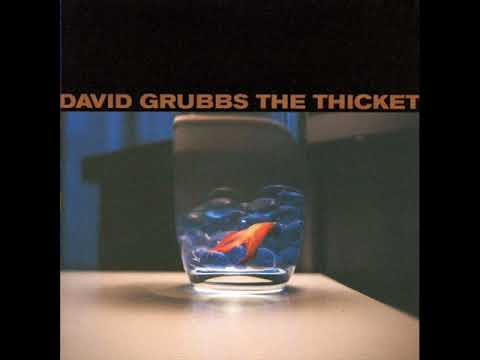 David Grubbs - The Thicket (1998) - FULL ALBUM