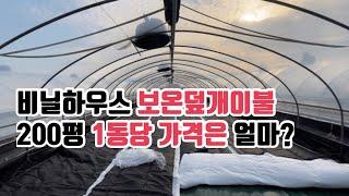 비닐하우스 보온덮개(이불) 200평 1동당 가격은? |…