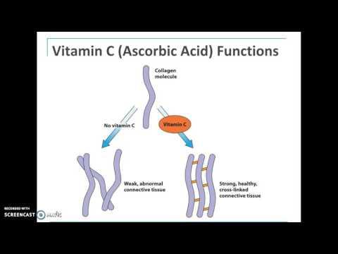 folate, B12, C and Choline