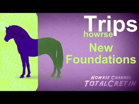 New Foundations - Howrse Trips