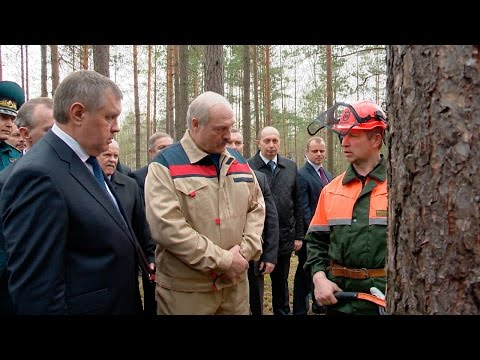 Лукашенко: сельское хозяйство