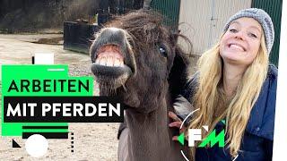 Knochenjob Pferdewirtin: Das Leben ist (k)ein Ponyhof