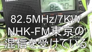 ラジオ沖縄(ROK)&琉球放送(RBC)のFM中継局をEsで受信