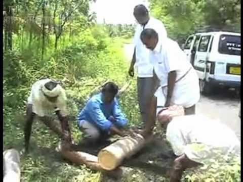 Sri Sai Uttej Farm Land Malabar Trees Presentation Doovi