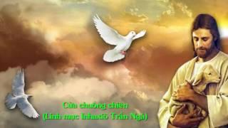 Cửa chuồng chiên - Linh mục Inhaxiô Trần Ngà