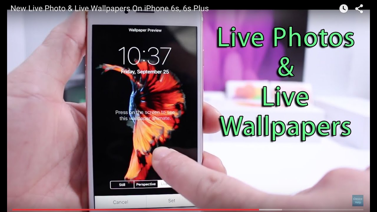 New Live Photo & Live Wallpapers On iPhone 6s, 6s Plus - YouTube