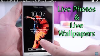 New Live Photo & Live Wallpapers On iPhone 6s, 6s Plus