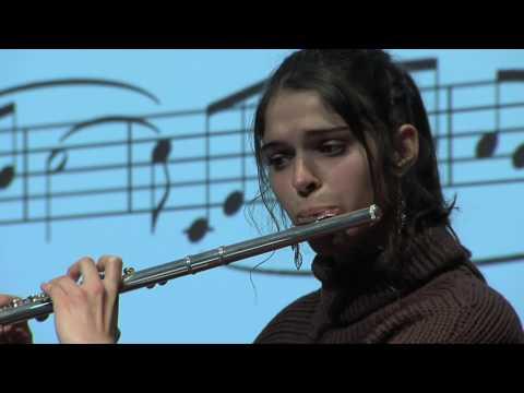 Comment créer des partitions interactives en musique   Alexis Steinmann   TEDxGeneva