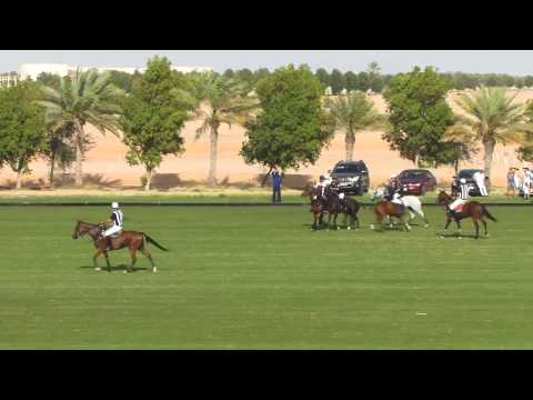 Zedan VS UAE Polo in the Emirates Open Polo Championship 2015