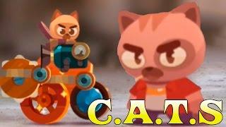 C.A.T.S - битва котов - коты воители битвы