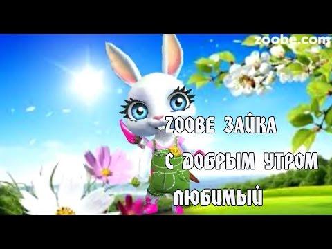 Zoobe Зайка,  С Добрым Утром Любимый!