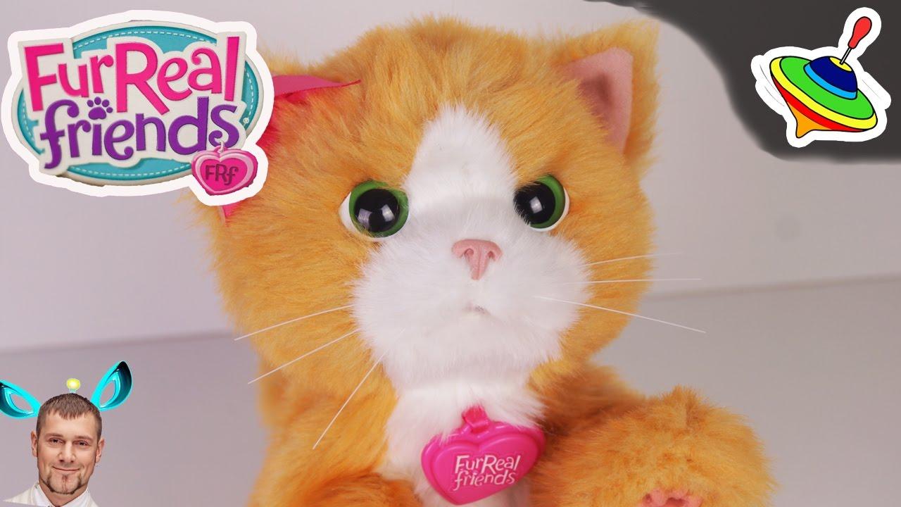 Игривый котенок Дейзи Furreal Friends Daisy - YouTube 0a9edda657f3c