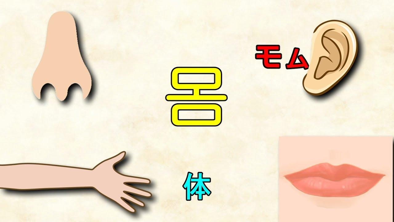 韓国語単語 体