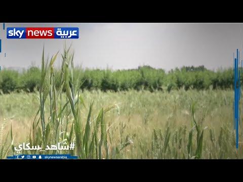 من هناك | لبنان.. محاولات إنعاش قطاع الزراعة المتضرر بسبب الأزمة المالية  - 22:59-2020 / 5 / 30