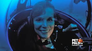Dr. Sylvia Earle is an ambassador for the Earth's oceans