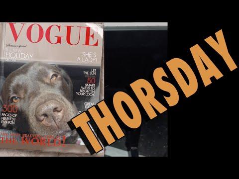 THORSDAY - Vogue Dog