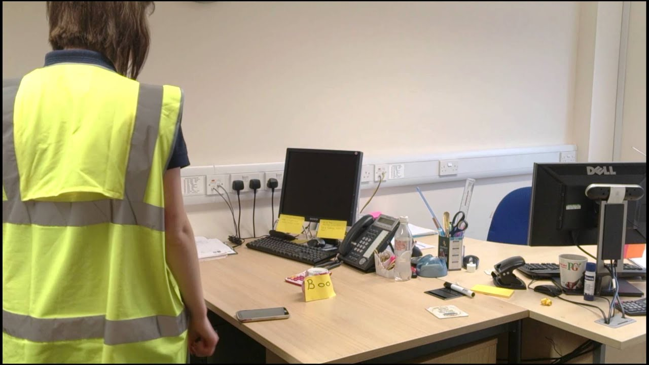 Funny Video: Office Live Spider Prank