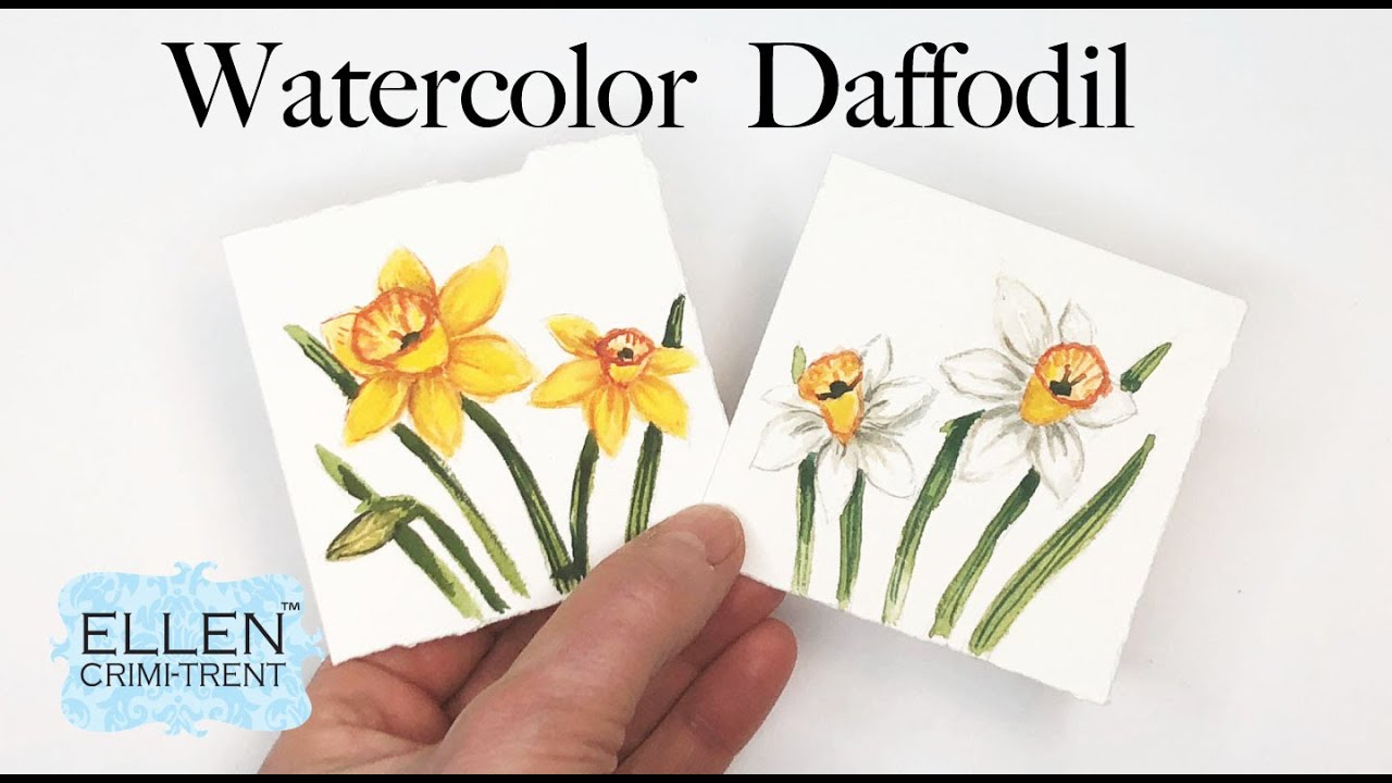 Watercolor Daffodils- Hello March Birth Flower!